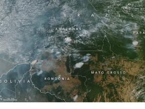 Fumaça de queimada em RO e AM já é visível de satélite da Nasa.