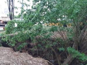 Erosão provoca deslizamento de terra às margens de rio e abre novo buraco na Av. Raul Lopes.